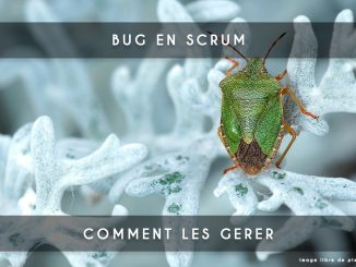 bug en scrum