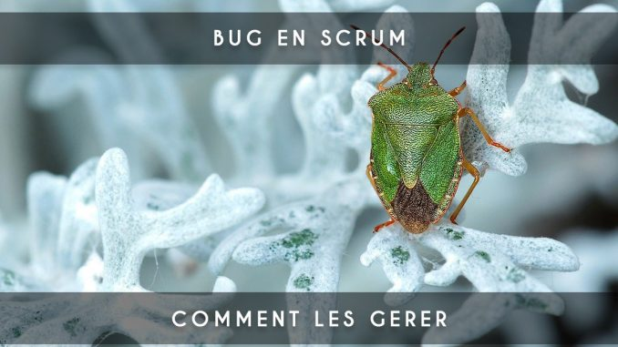 bug en scrum
