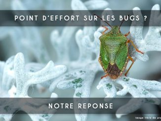 point d effort sur les bugs