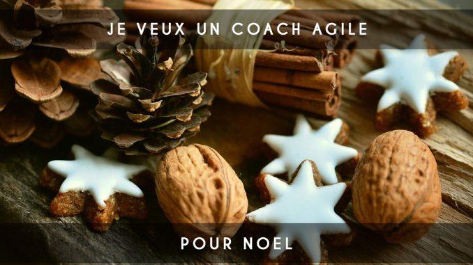 coach agile noel