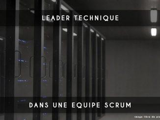 leader technique