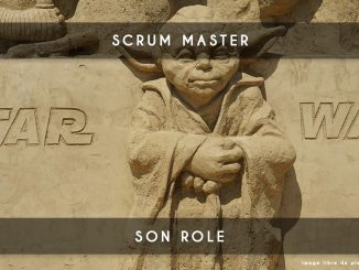 scrum master - son role