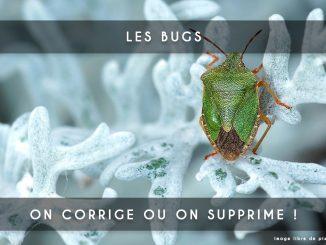 bugs corriger ou supprimer