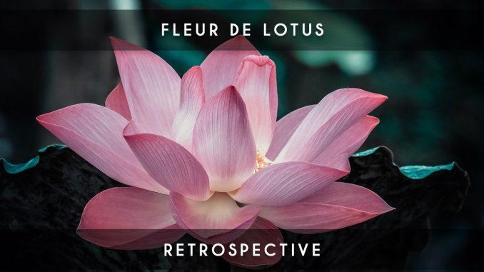 Fleur De Lotus rétrospective #7 : la fleur de lotus - blog myagile partner