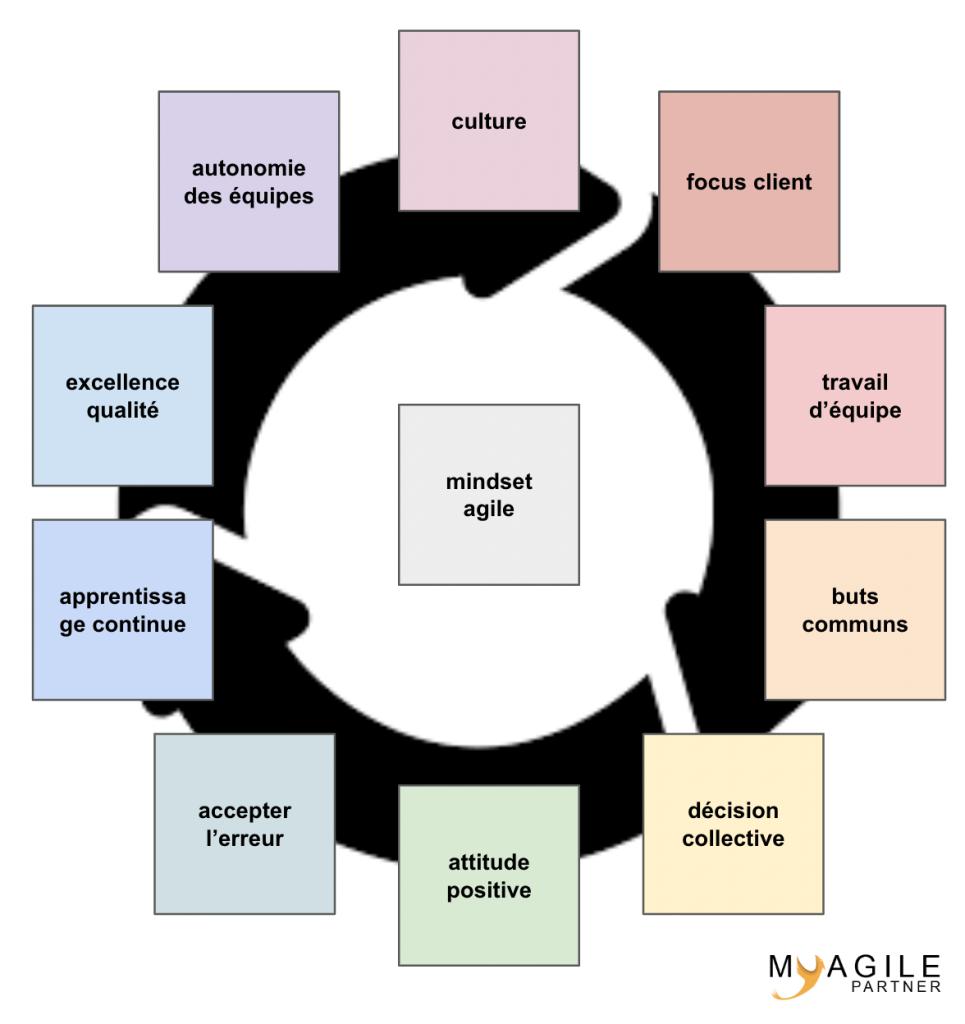 culture d'entreprise agile