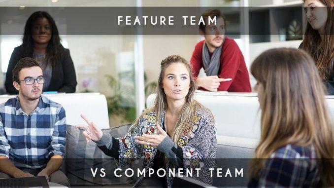 feature team vs compenent team