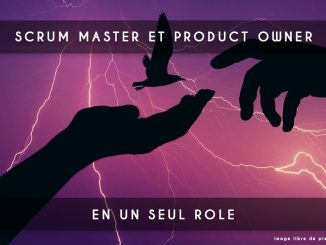 scrum master et product owner
