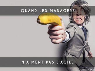 manager n aime pas l agile